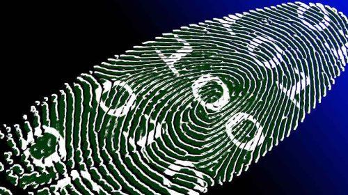 biometrico pixabay